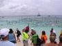 2011 One Mile Swim